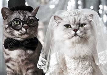 wedding_1